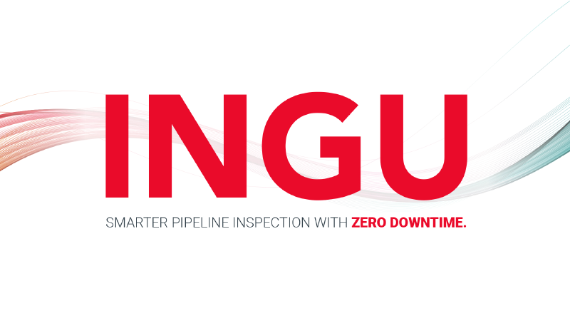 Ingu solutions
